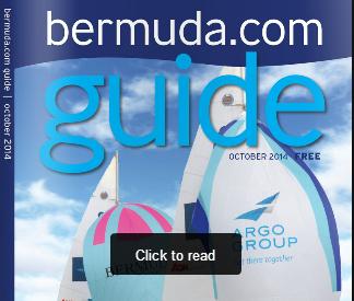 bermuda dot com guide