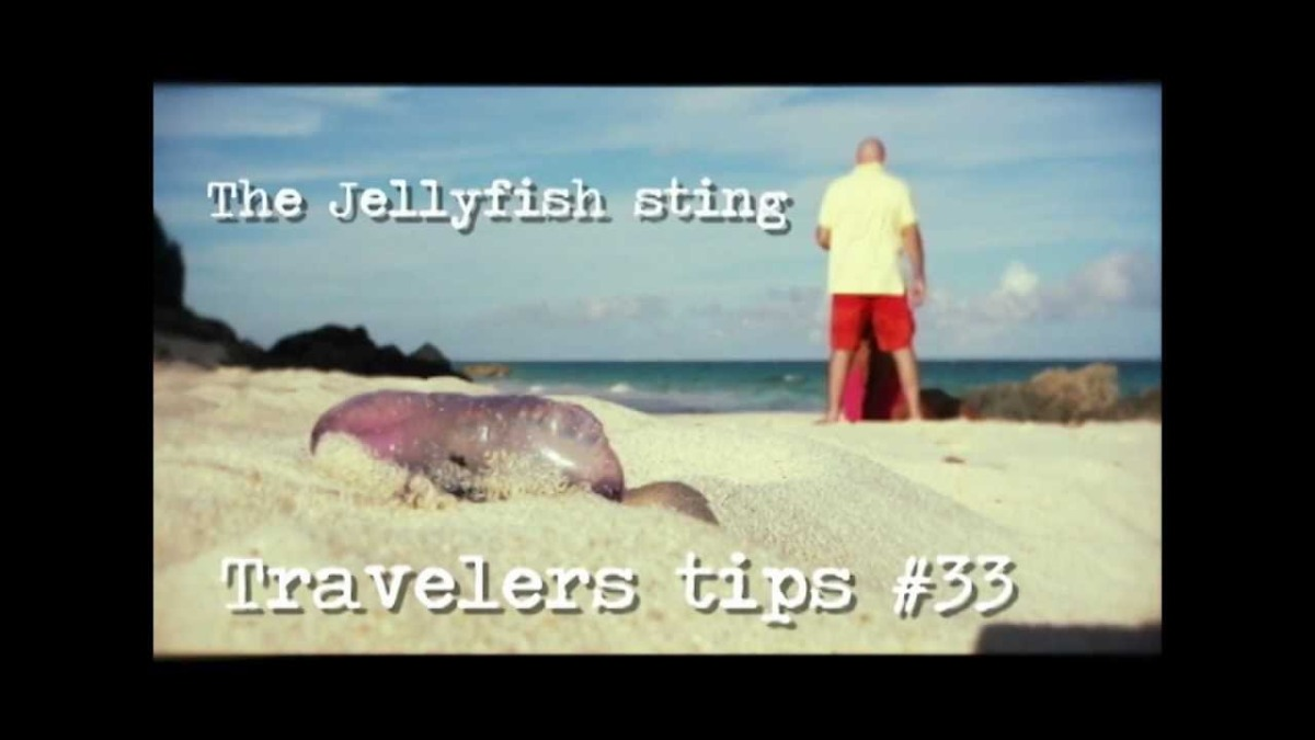 #Bermuda Travel Tips - JellyFish / Portuguese Man of War Sting Treatment [spoof]