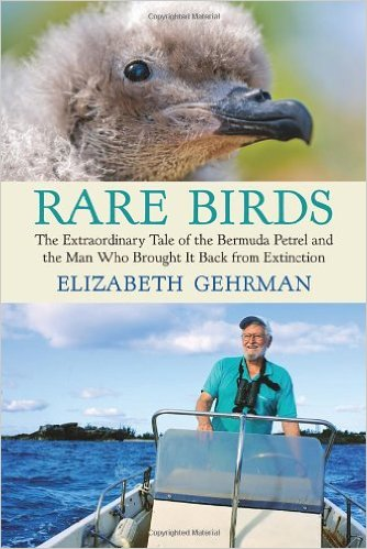 Rare Birds The Extraordinary Tale of the Bermuda Petrel and the Man Who Brought it Back from Extinction by Elizabeth Gehrman