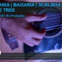 Mishka - One Tree Live in Portugal 2014 @mishkamusic