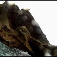Bermuda Cliff Jumping - Higg, Paul & Riz