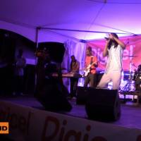 Gyptian - Serious Times #Bermuda Concert 2011, I Can Feel Your Pain + interview @RealGyptian