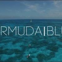 #Bermuda Blue - Taylor Rankin @TaylorRankinVio