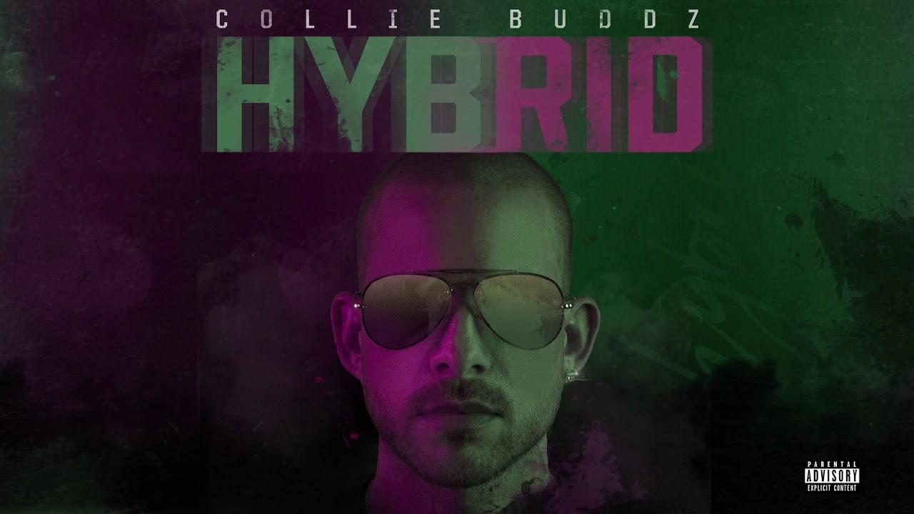 @CollieBuddz #Hybrid