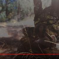 @Hannah_Eggen - Strange Fruit - Nina Simone #Cover | Official Video